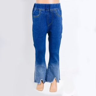 Ombre Flare Jeans